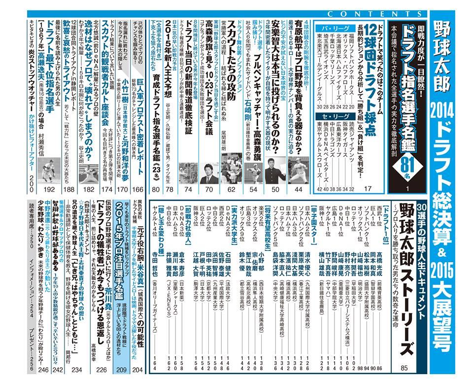 野球太郎N0.013  2014ドラフト総決算&2015大展望号