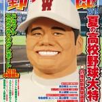 有望選手800名以上掲載!『野球太郎No.019 2016夏の高校野球大特集号』は6月16日発売!